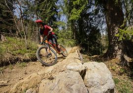 bikepark_oberammergau_fichtenschreck2
