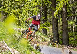 bikepark_oberammergau_hobbit2
