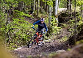 bikepark_oberammergau_wurzelsepp